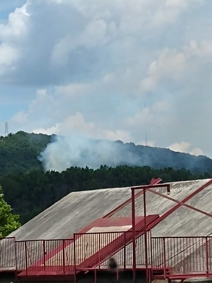 Neversink Brush Fire